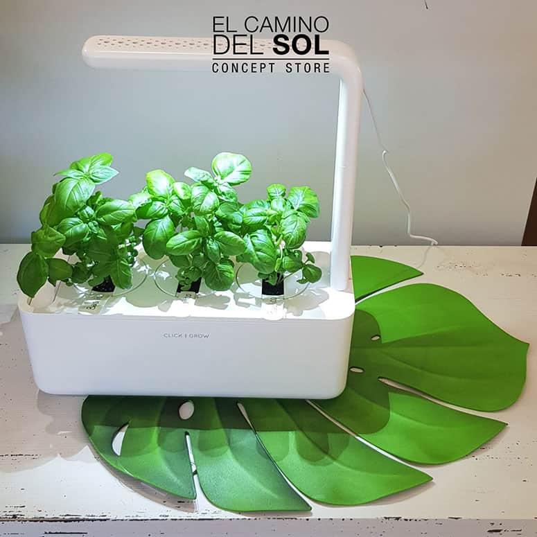 Smart Garden | EL CAMINO DEL SOL