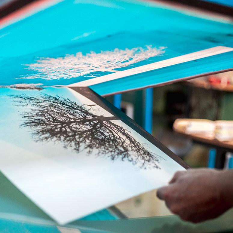 Anatomia dell'Essere serigrafie artistiche con colori naturali | EL CAMINO DEL SOL